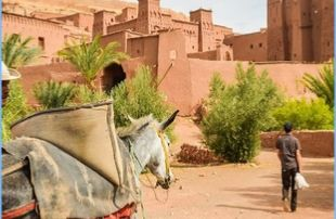 3 Days Erg Chigaga Tours from Marrakech