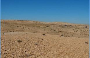 3-days-adventure-Agafay-desert-trek-310x202 Desert tours
