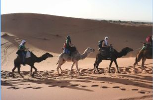 5-DAYS-FES-TO-SAHARA-DESERT-TOUR--309x202 Home