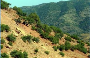 Kik-Plateau-the-valleys-of-Asni-Ourika-309x202 Home