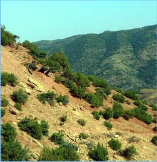 Kik-Plateau-the-valleys-of-Asni-Ourika Home