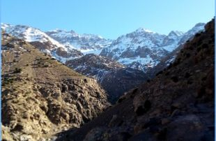 Marrakech-to-Asni-and-Ouirgane-day-trip-310x202 Home