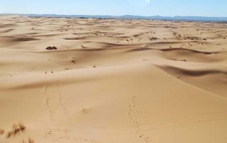 merzouga-desert-320x202 Combine trips