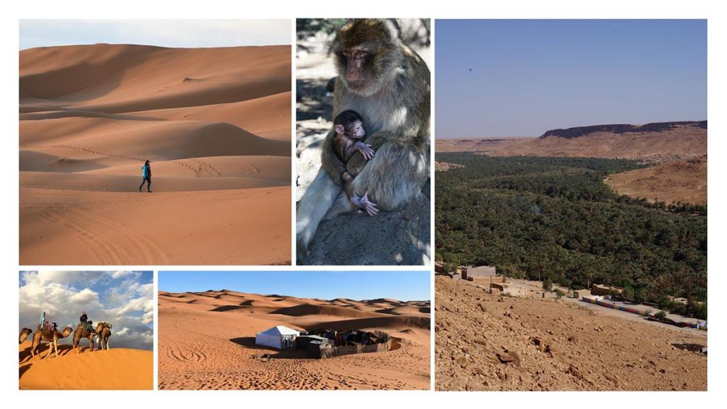 6-day-from-Marrakech-to-Fes-Rose-Valley-and-Sahara-1-1024x576 6 day from Marrakech to Fes - Rose Valley and Sahara