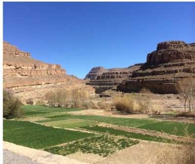 Rose-Valley-and-the-Gheris-River Desert tours